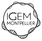 igemmontpellierfristotelsa_logo2019engrenagesans-fond.png