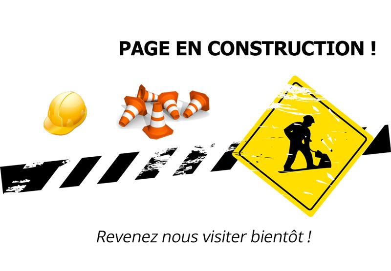 image siteenconstruction.png (0.1MB)